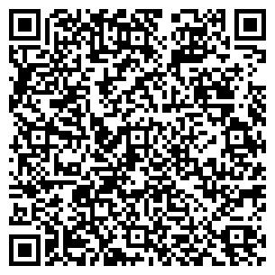 QR-код с контактной информацией организации ЛЕДИ.