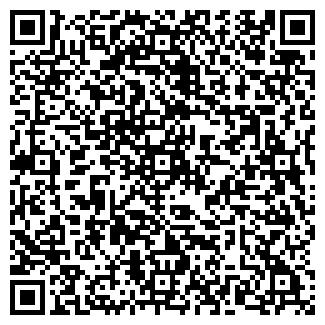 QR-код с контактной информацией организации ВИРДЖИНИЯ ТК
