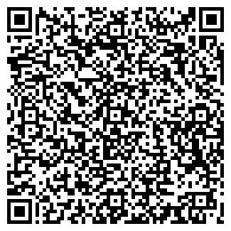 QR-код с контактной информацией организации ДИЗЕЛЬ