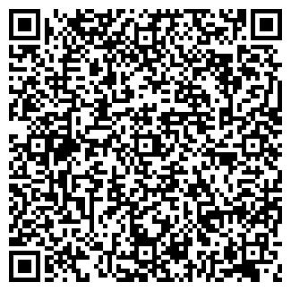 QR-код с контактной информацией организации VIP-АВТО