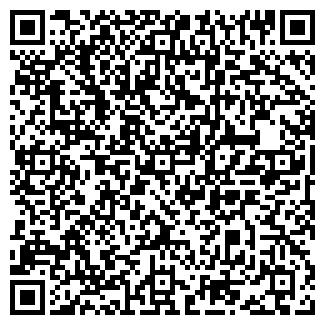QR-код с контактной информацией организации ОФИСНЫЕ СИСТЕМЫ
