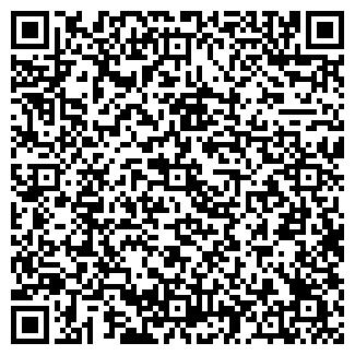 QR-код с контактной информацией организации АЛТАЙСКИЕ ЗОРИ