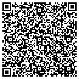 QR-код с контактной информацией организации ЛЕММ ТД