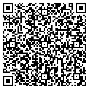 QR-код с контактной информацией организации № 113
