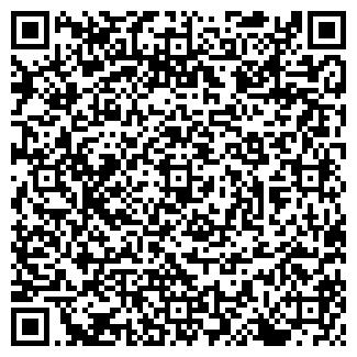 QR-код с контактной информацией организации СЕЛЕСТА ФИЛИАЛ