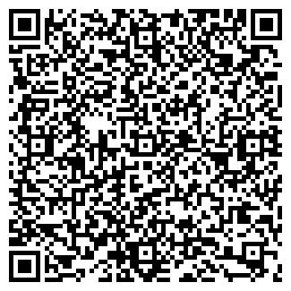 QR-код с контактной информацией организации ЛИСЭ, ООО