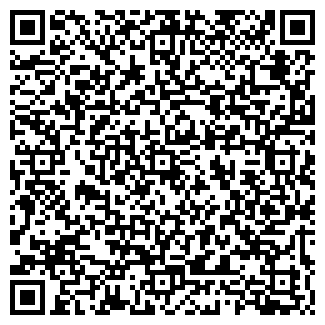 QR-код с контактной информацией организации ЧП КАМЕНЕВ А. А.
