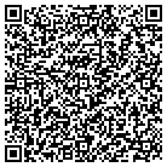 QR-код с контактной информацией организации СИСТЕМНЫЕ РЕШЕНИЯ НОУ