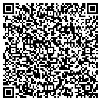 QR-код с контактной информацией организации НОВИКОВ И СЫН