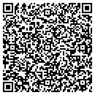 QR-код с контактной информацией организации СИБ-ФЕНИКС