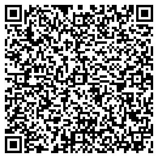 QR-код с контактной информацией организации STEFF, ООО
