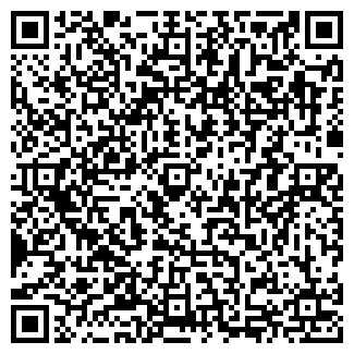 QR-код с контактной информацией организации DVZION