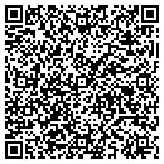 QR-код с контактной информацией организации ООО ВОЛНА К