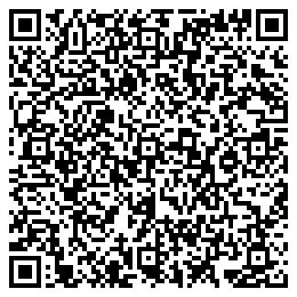 QR-код с контактной информацией организации БИЗНЕС ТРАНЗИТ