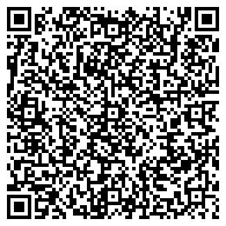 QR-код с контактной информацией организации ИП БИРЮКОВ В.Н.