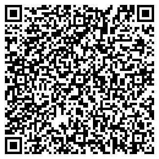QR-код с контактной информацией организации ИВЕЛАЙН ОДО