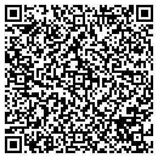 QR-код с контактной информацией организации ИВИНА, ООО
