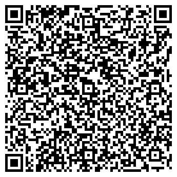 QR-код с контактной информацией организации ШИШКИН И КОМПАНИЯ