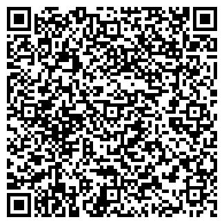 QR-код с контактной информацией организации Nico&Martino.