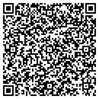 QR-код с контактной информацией организации ИЧИНСКОЕ, ЗАО
