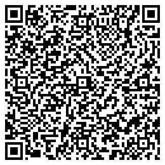 QR-код с контактной информацией организации ТВОЯ СТИХИЯ
