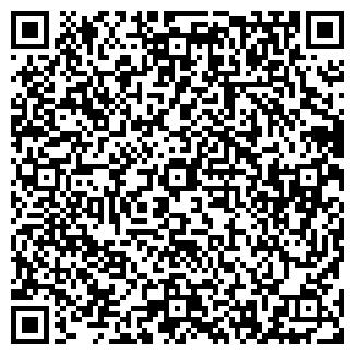QR-код с контактной информацией организации АЙСБЕРГ-Н