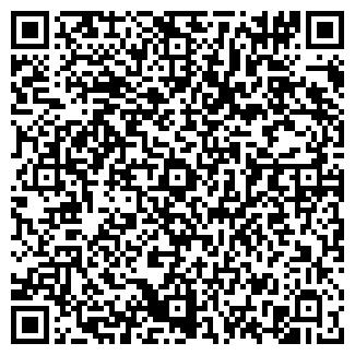 QR-код с контактной информацией организации ВИРАЖ СТО