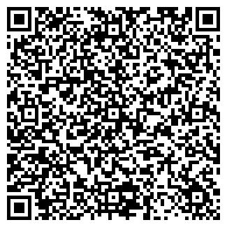 QR-код с контактной информацией организации БАЦЕЛЕВ В.П.
