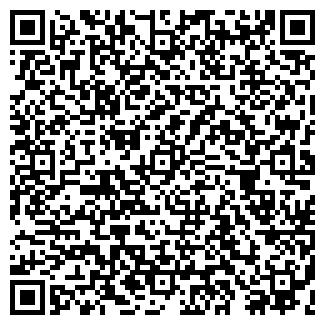 QR-код с контактной информацией организации ГРЕМИ-ОМСК