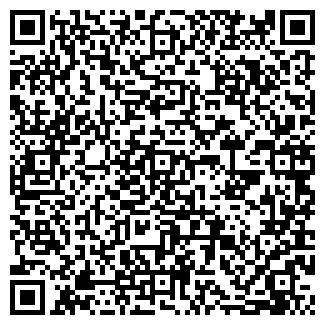 QR-код с контактной информацией организации ШАНС ООО