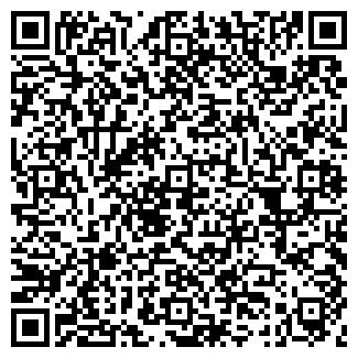 QR-код с контактной информацией организации ТОПОЛИНЫЙ