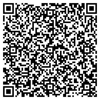 QR-код с контактной информацией организации РОЛИЗ-ОМСК, ООО