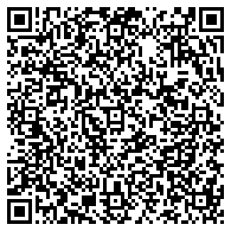 QR-код с контактной информацией организации ВАВИЛОН-ОМСК