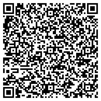 QR-код с контактной информацией организации БАГИРА ПТФ, ООО