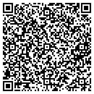 QR-код с контактной информацией организации РЕМИЗОВИЧ Н. И.