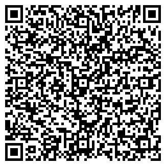 QR-код с контактной информацией организации МАЛЕНЬКИЙ ТОЛЬЯТТИ