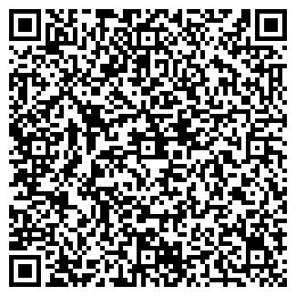 QR-код с контактной информацией организации РАЗГУЛОВ В.В.