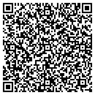 QR-код с контактной информацией организации ДЮСШ № 13
