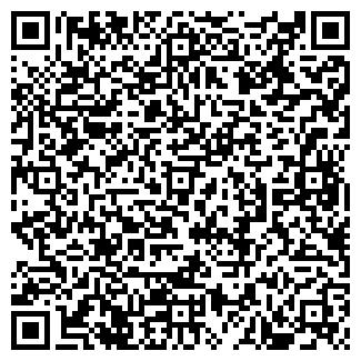 QR-код с контактной информацией организации СЕРЕБРЯНЫЙ ШАР