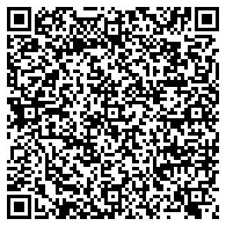 QR-код с контактной информацией организации РИА-ОМСК
