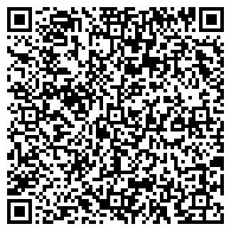 QR-код с контактной информацией организации BIG VILLAGE РА