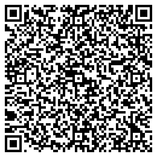 QR-код с контактной информацией организации ДЕТОНАТОR-PS