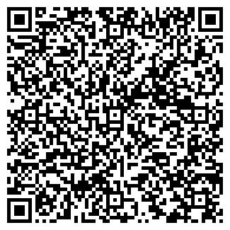 QR-код с контактной информацией организации ТРОЙКА-ДИАЛОГ