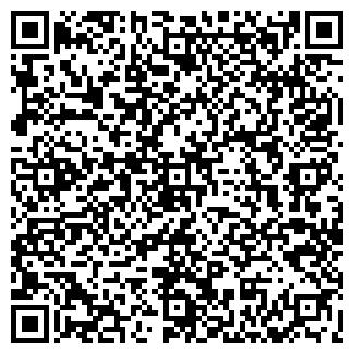 QR-код с контактной информацией организации ШАХМАТНЫЙ КЛУБ, ОАО
