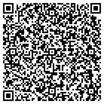 QR-код с контактной информацией организации ОМСКИЙ ГОСУДАРСТВЕННЫЙ ЦИРК