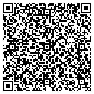 QR-код с контактной информацией организации МОЛНИЯ, СТАДИОН