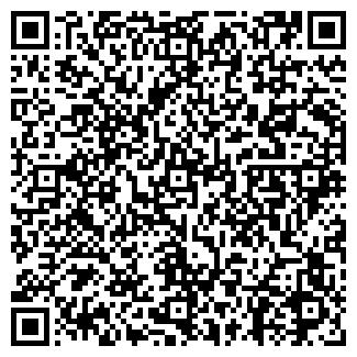 QR-код с контактной информацией организации НОРИНСКИЙ ЗАО