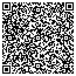 QR-код с контактной информацией организации DOTWEB