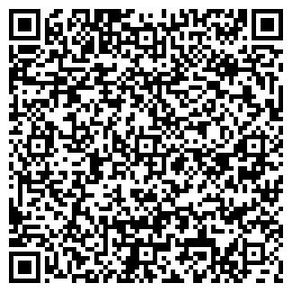 QR-код с контактной информацией организации ВИП-ШОУ КОМПАНИЯ