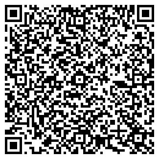 QR-код с контактной информацией организации ВИЛИЯ